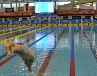 Komunikat Zarządu Świętokrzyskiego Okręgowego Związku Pływackiego w Kielcach